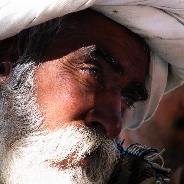 grid 1 india rajasthan oude man 299